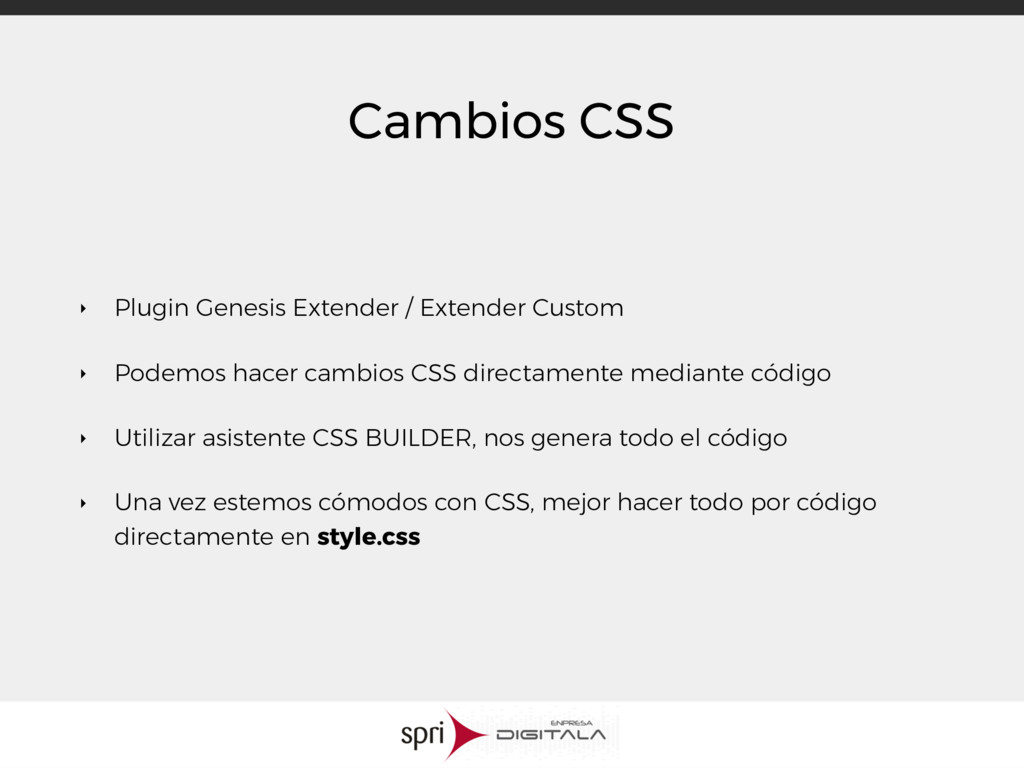 Cambios CSS ‣ Plugin Genesis Extender / Extende...
