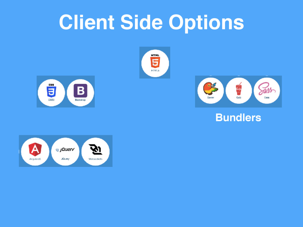Client Side Options Bundlers