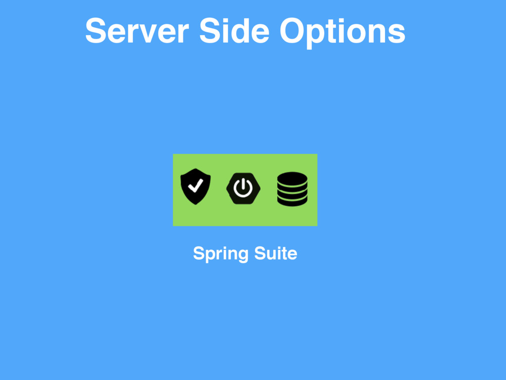 Server Side Options Spring Suite