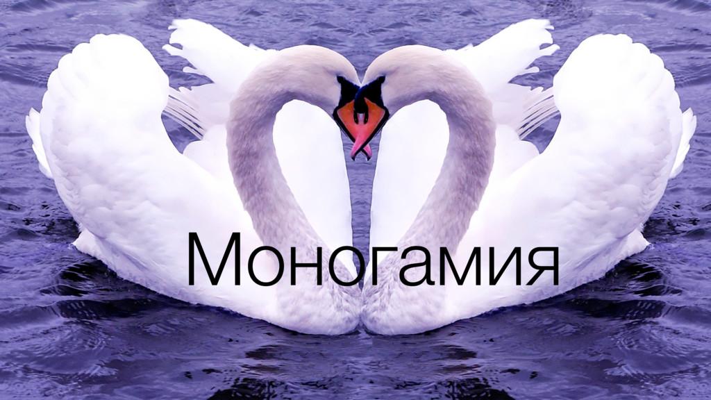 Моногамия