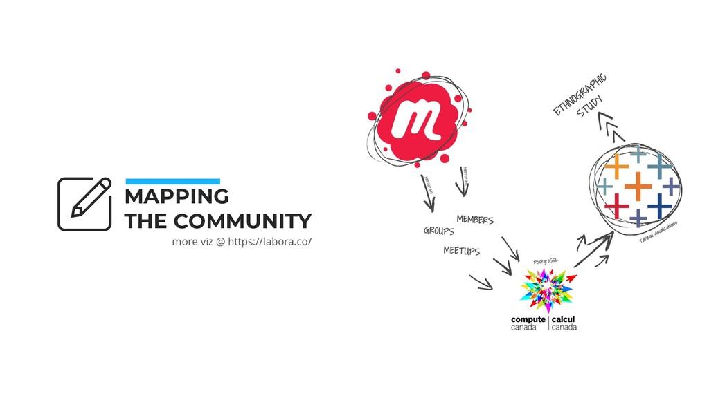 MAPPING THE COMMUNITY more viz @ https://labora...