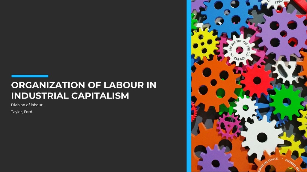 ORGANIZATION OF LABOUR IN INDUSTRIAL CAPITALISM...