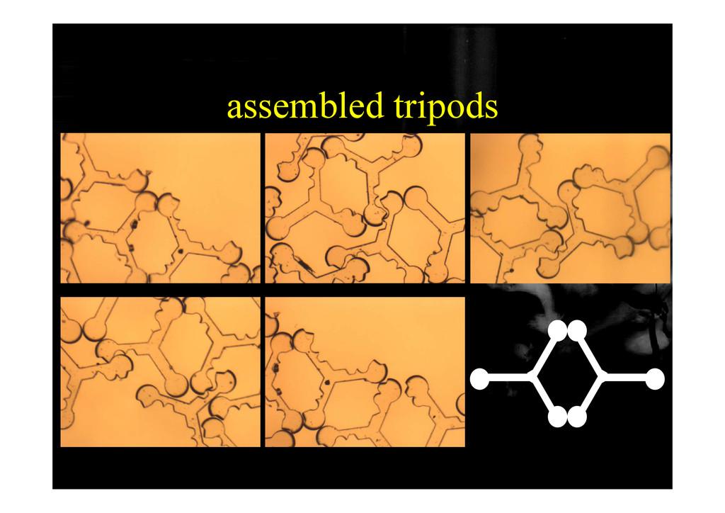 assembled tripods