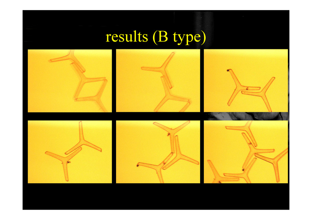 results (B type) results (B type)
