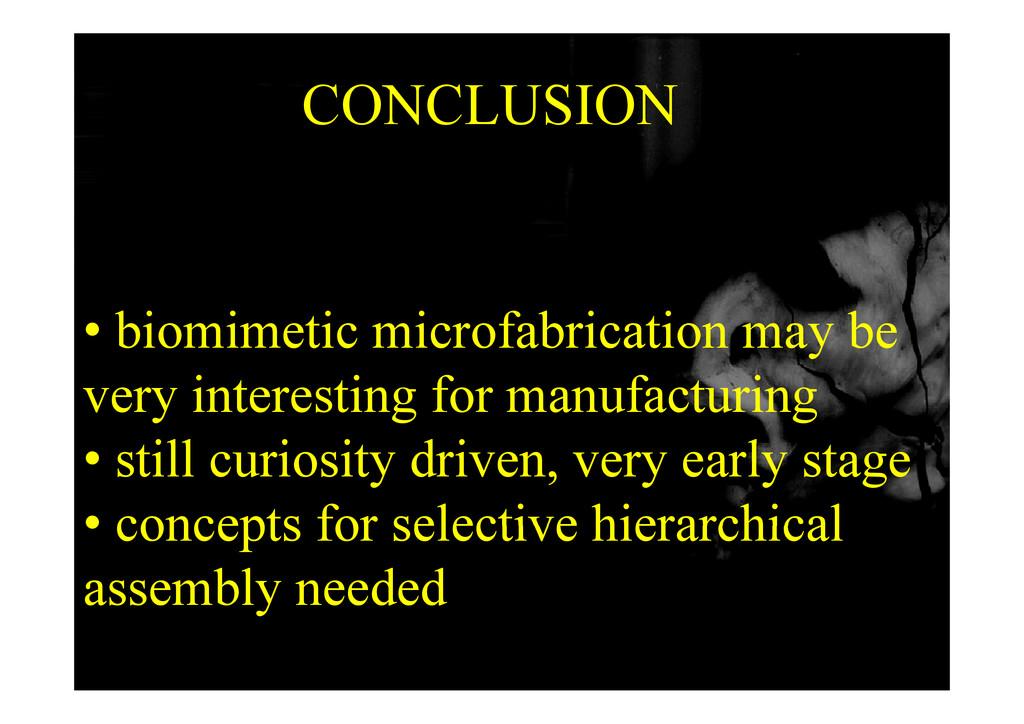 CONCLUSION CONCLUSION • biomimetic microfabrica...