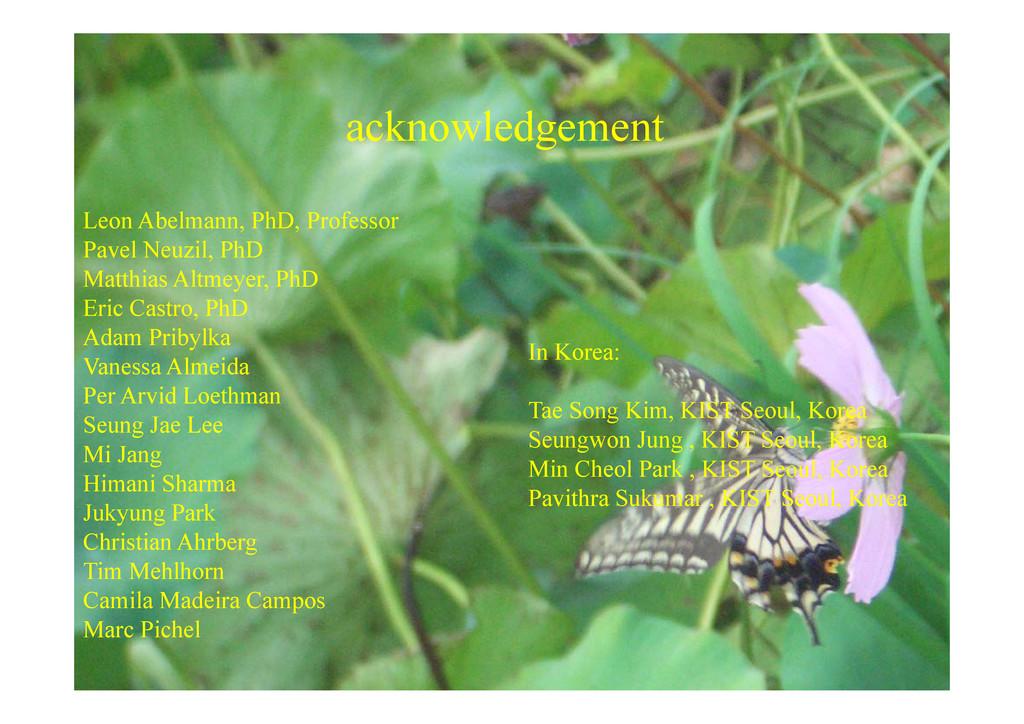 k l d t acknowledgement Leon Abelmann, PhD, Pro...