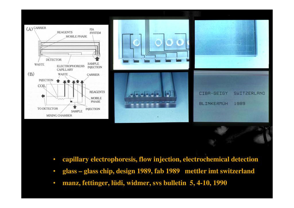 • capillary electrophoresis, flow injection, el...