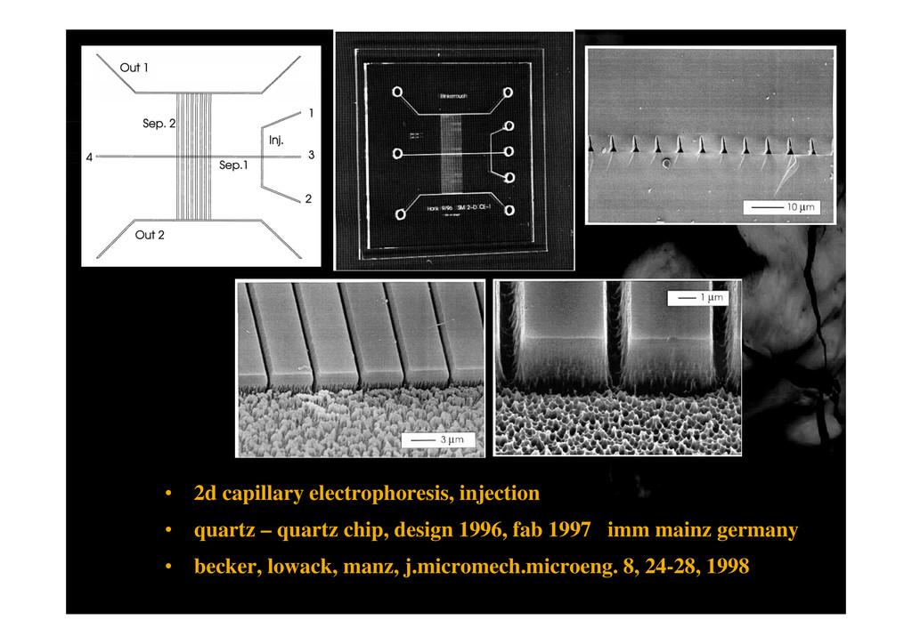 • 2d capillary electrophoresis, injection • qua...