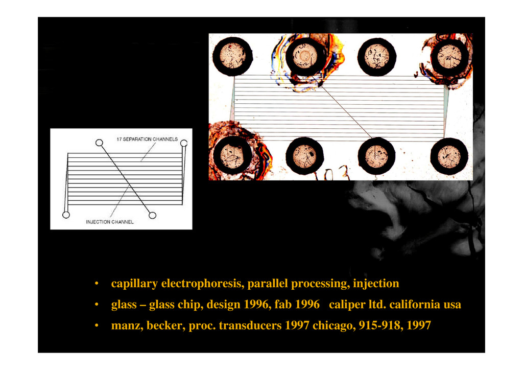 • capillary electrophoresis, parallel processin...
