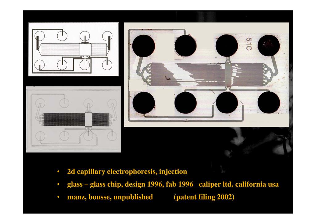 • 2d capillary electrophoresis, injection • gla...
