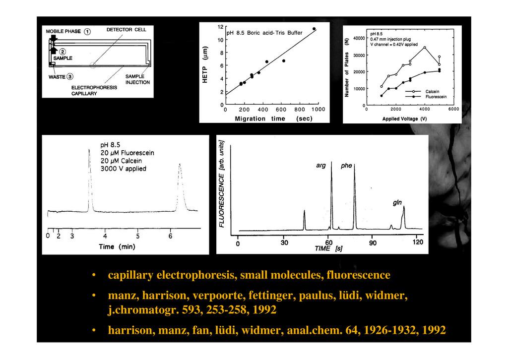 • capillary electrophoresis, small molecules, f...