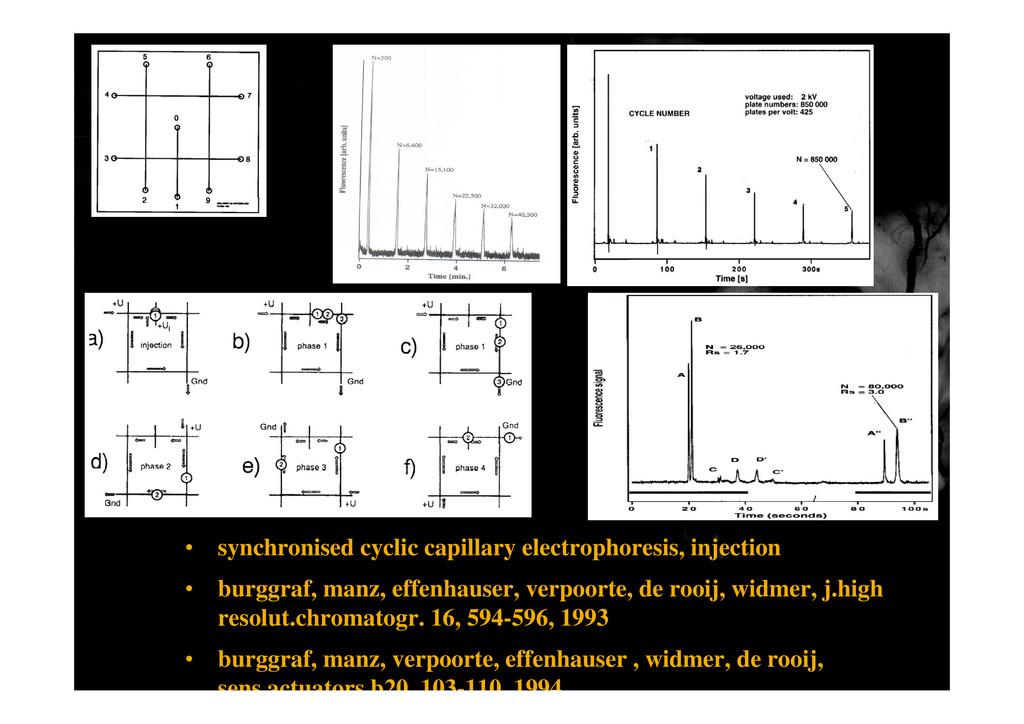 • synchronised cyclic capillary electrophoresis...