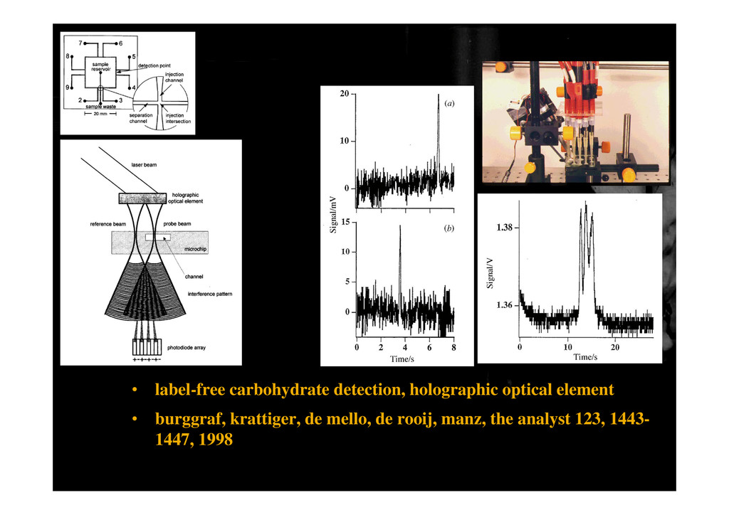 • label-free carbohydrate detection, holographi...