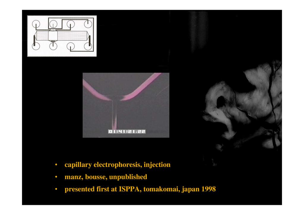 • capillary electrophoresis, injection • manz, ...