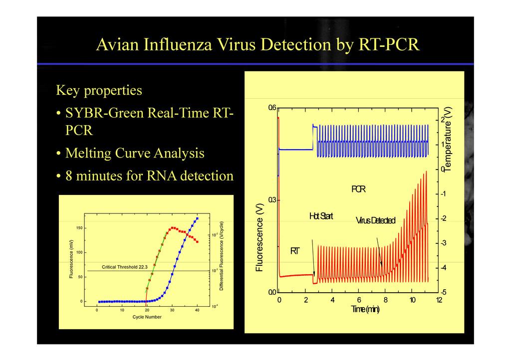 Avian Influenza Virus Detection by RT-PCR Key p...