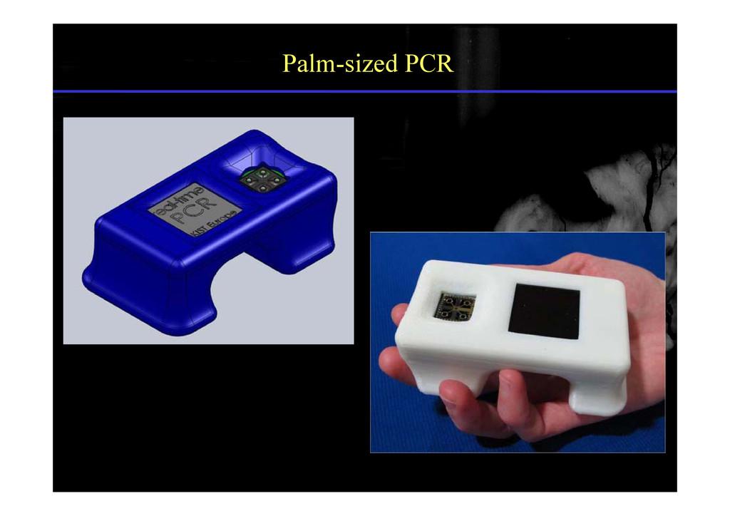 Palm-sized PCR