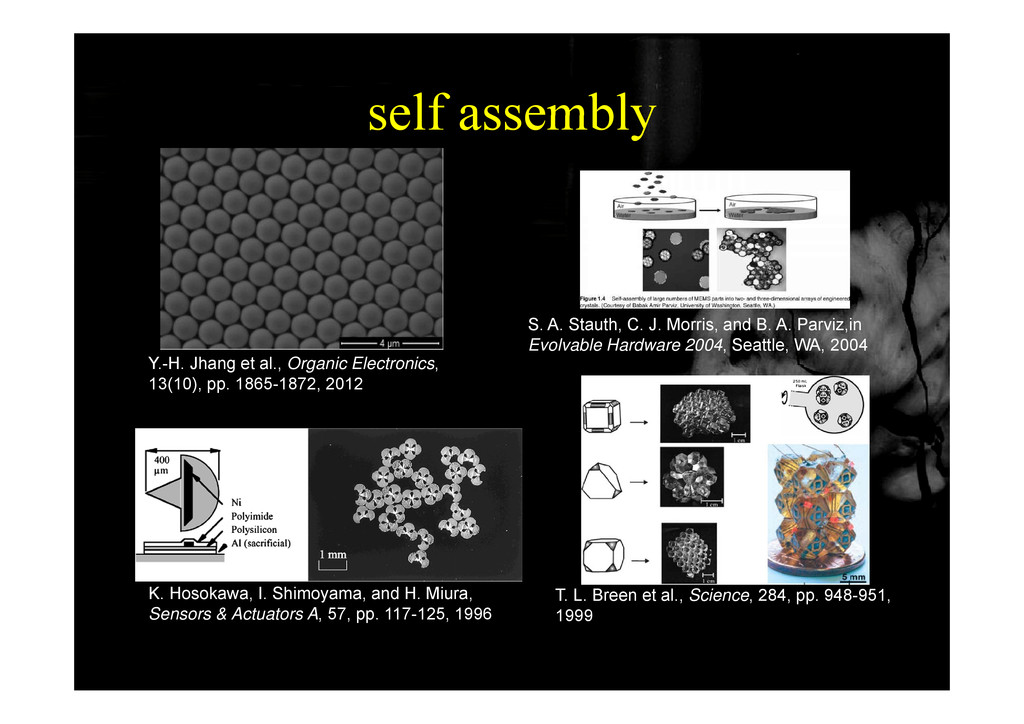 self assembly self assembly S. A. Stauth, C. J....