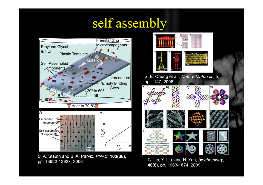 self assembly y S. E. Chung et al., Nature Mate...