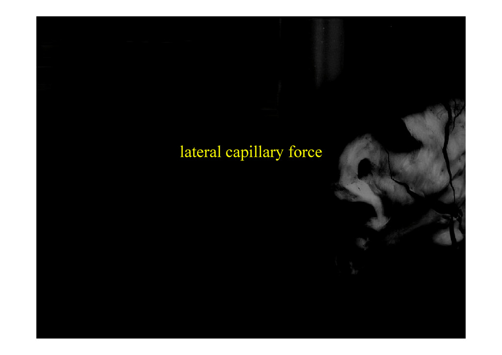 lateral capillary force