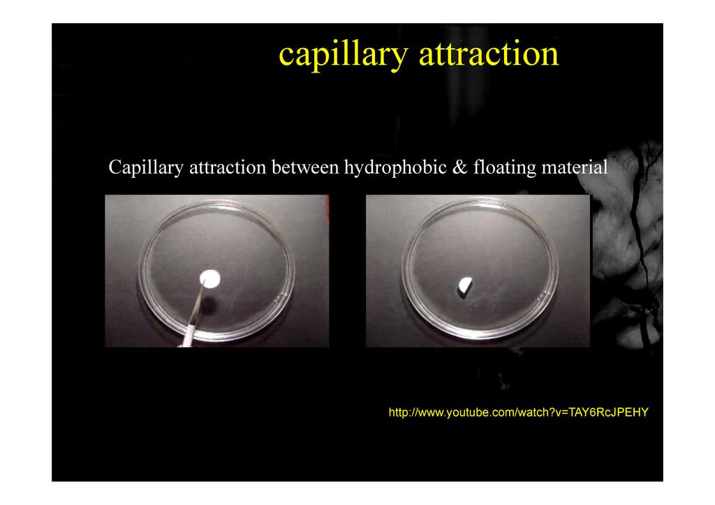 capillary attraction Capillary attraction betwe...