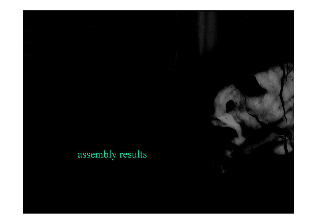 assembly results
