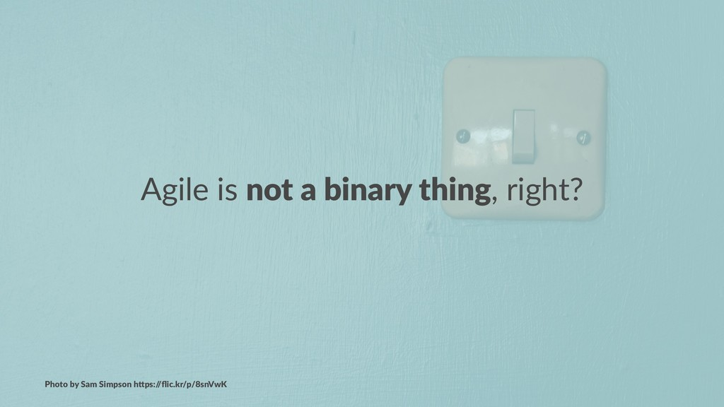 Agile is not a binary thing, right? Photo by Sa...