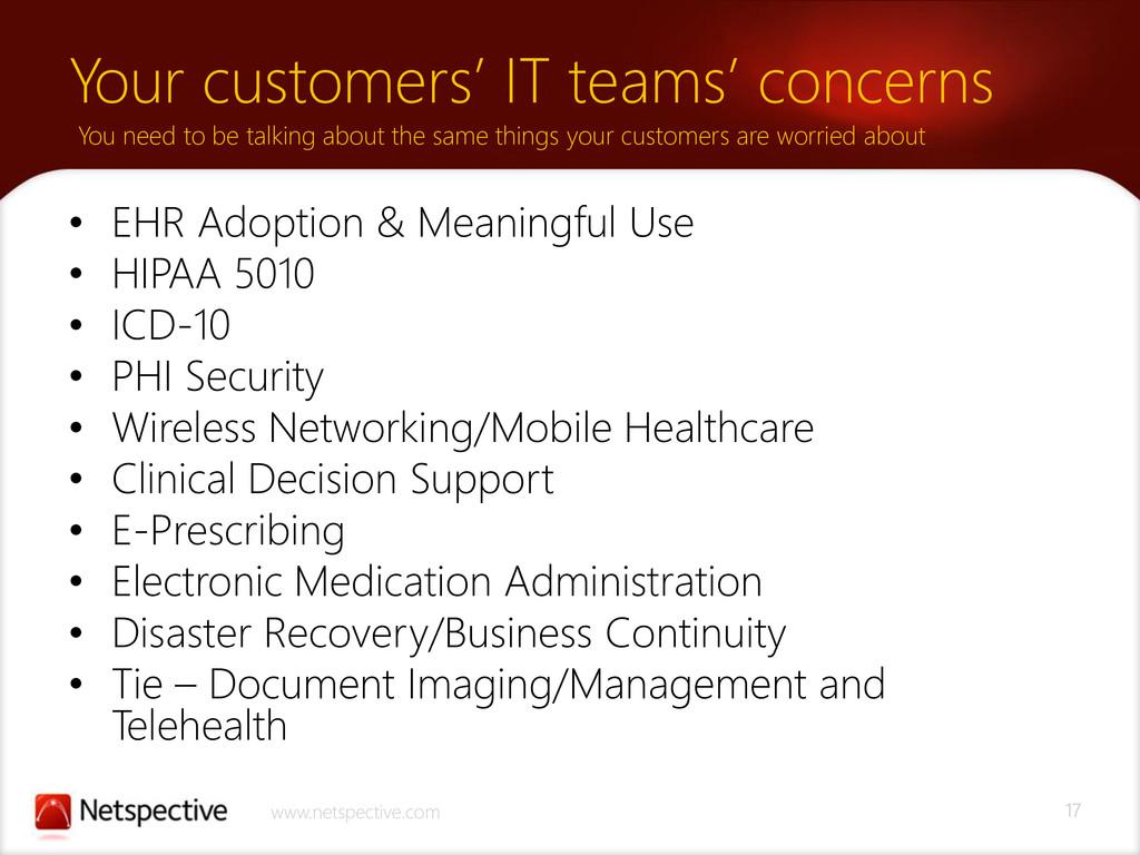 17 www.netspective.com Your customers' IT teams...