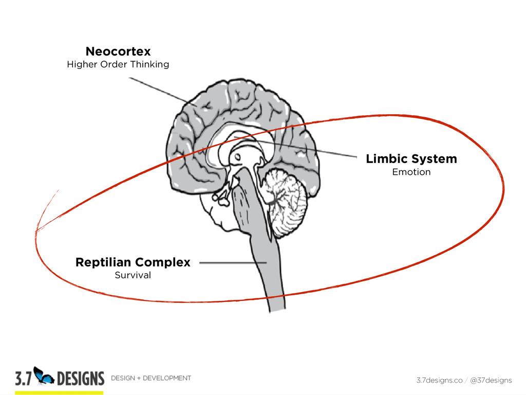 3.7designs.co / @37designs Neocortex Higher Ord...
