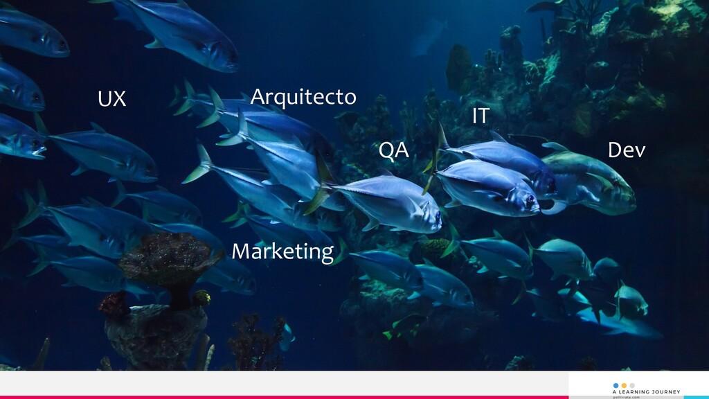 Arquitecto QA Dev IT Marketing UX