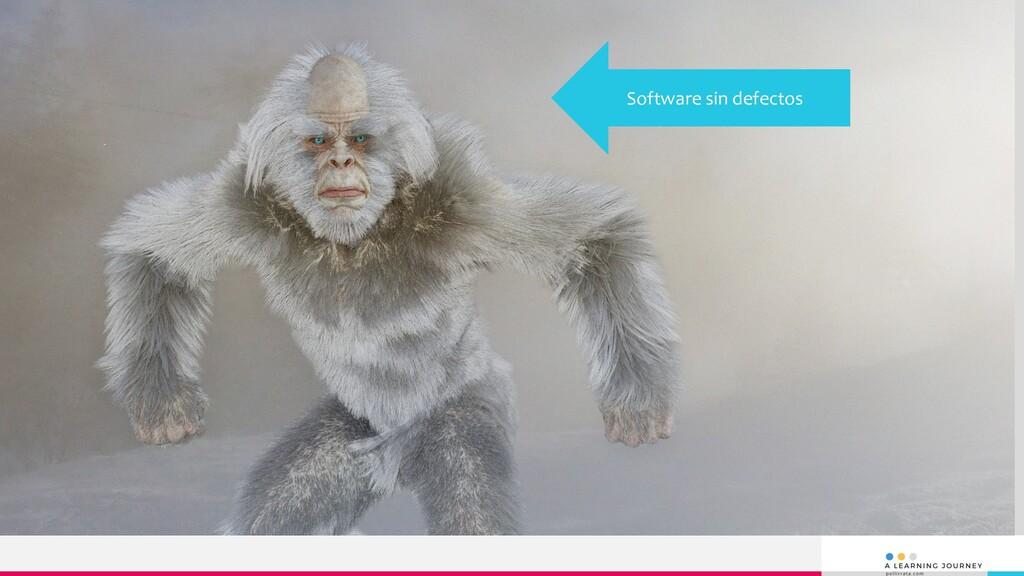Software sin defectos