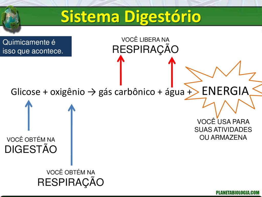 Glicose + oxigênio → gás carbônico + água + ENE...