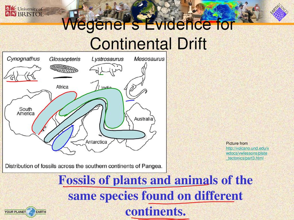 Wegener's Evidence for Continental Drift Fossil...