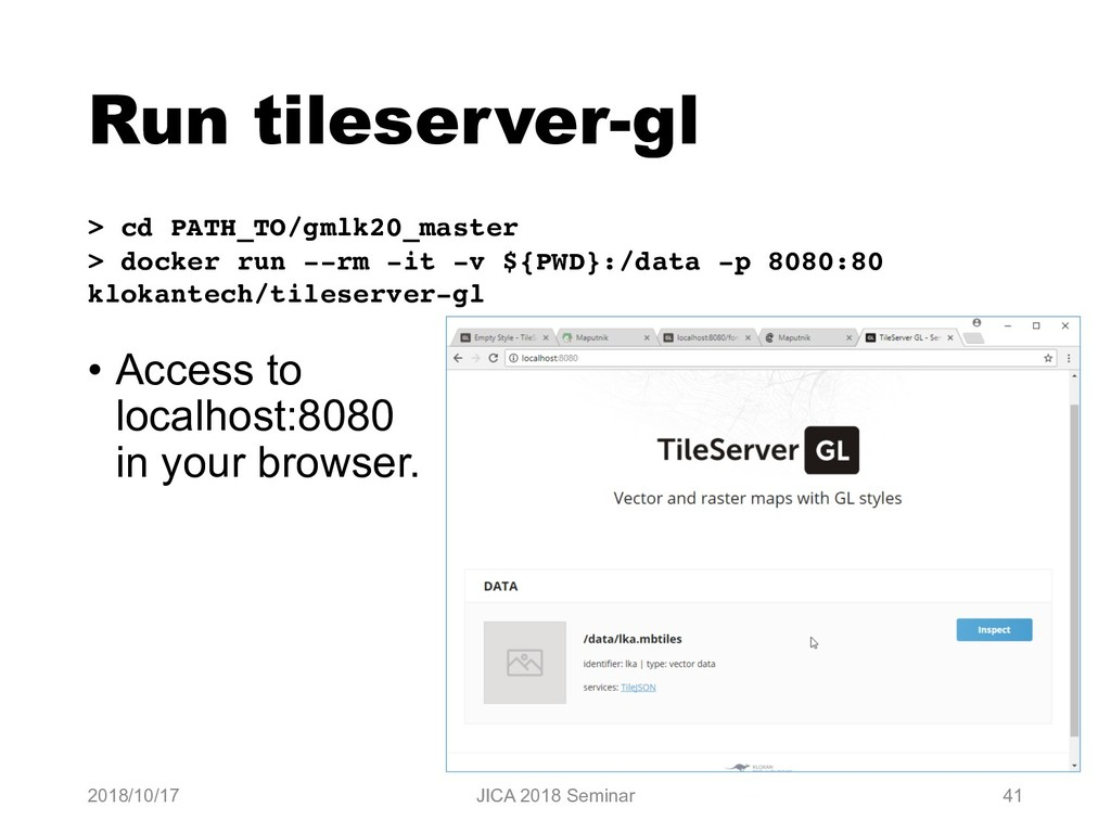 Run tileserver-gl • Access to localhost:8080 in...
