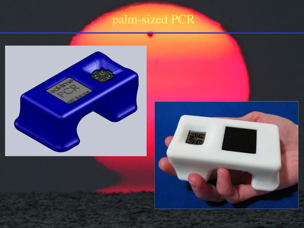 palm-sized PCR