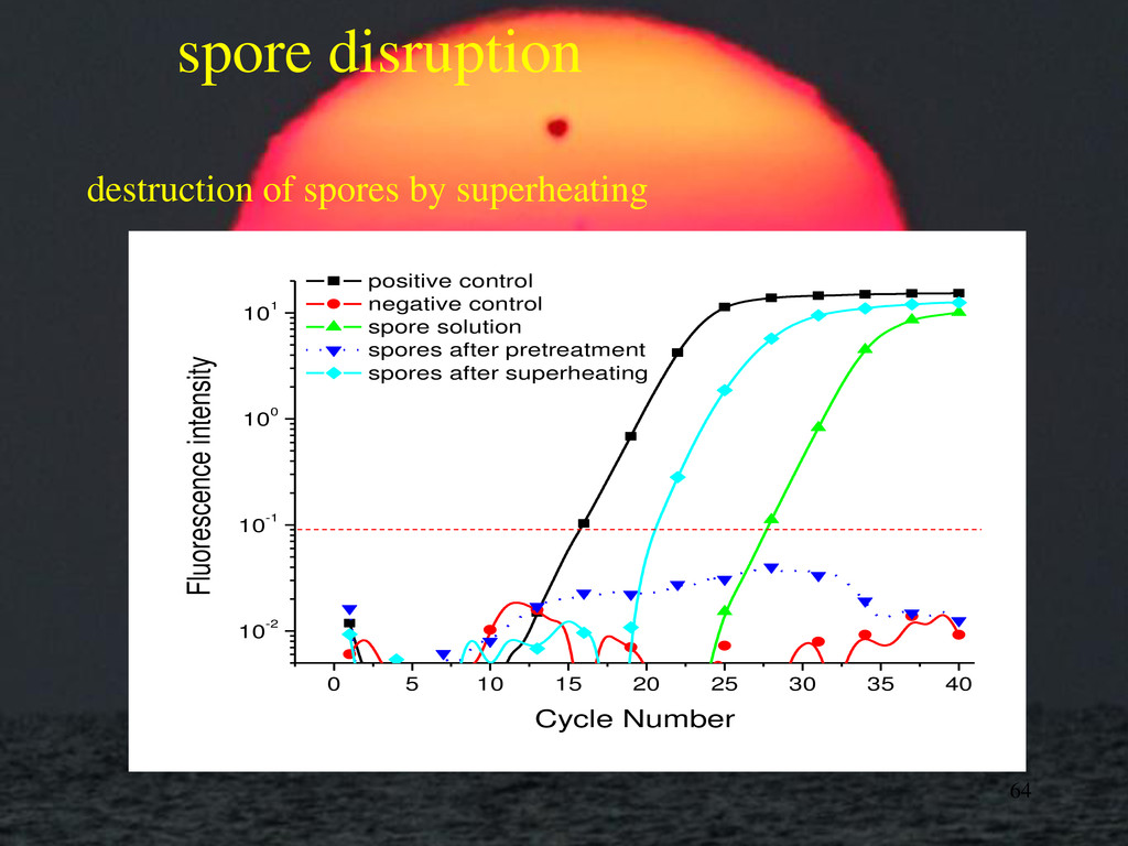 spore disruption destruction of spores by super...