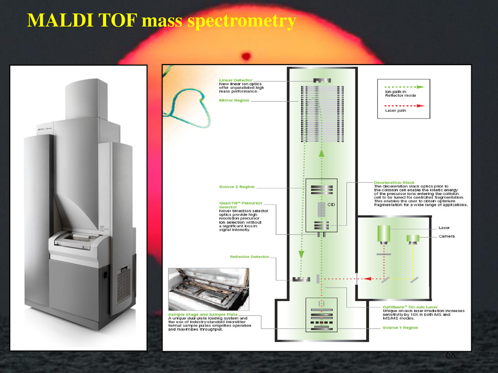 MALDI TOF mass spectrometry 68