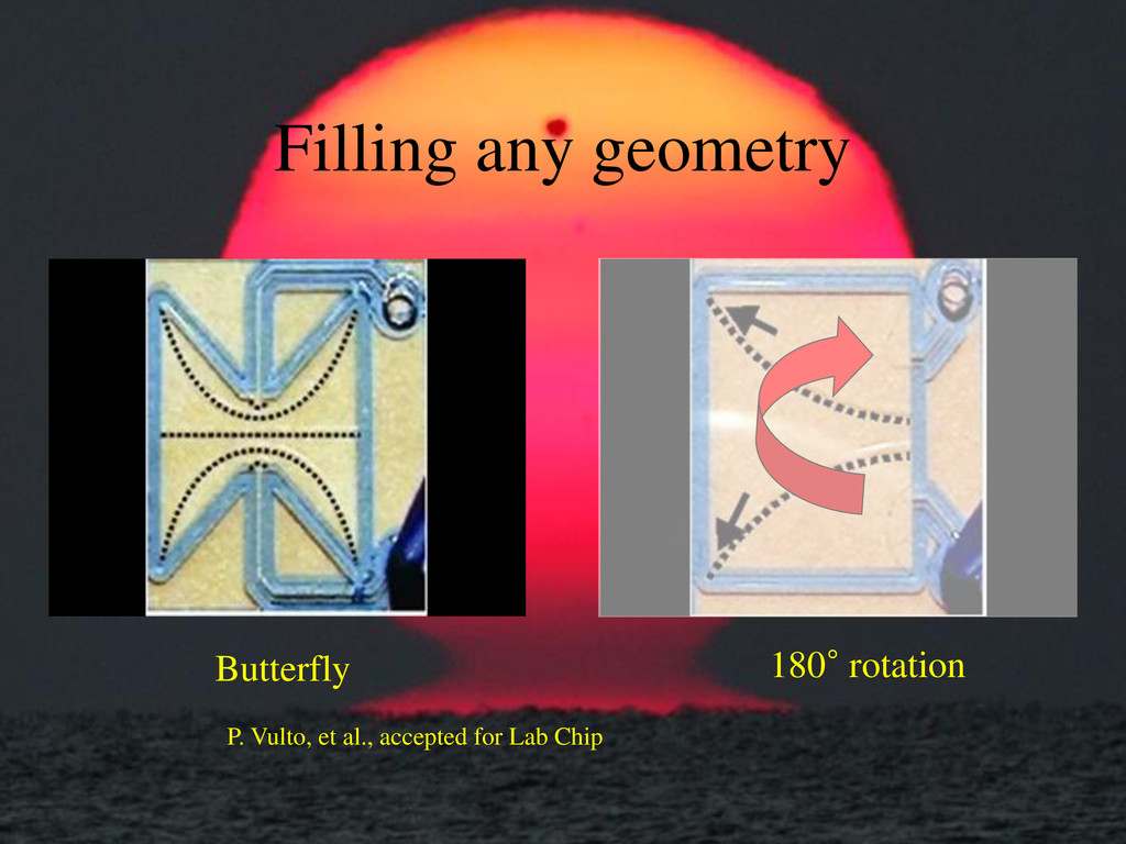 Butterfly 180° rotation Filling any geometry P....