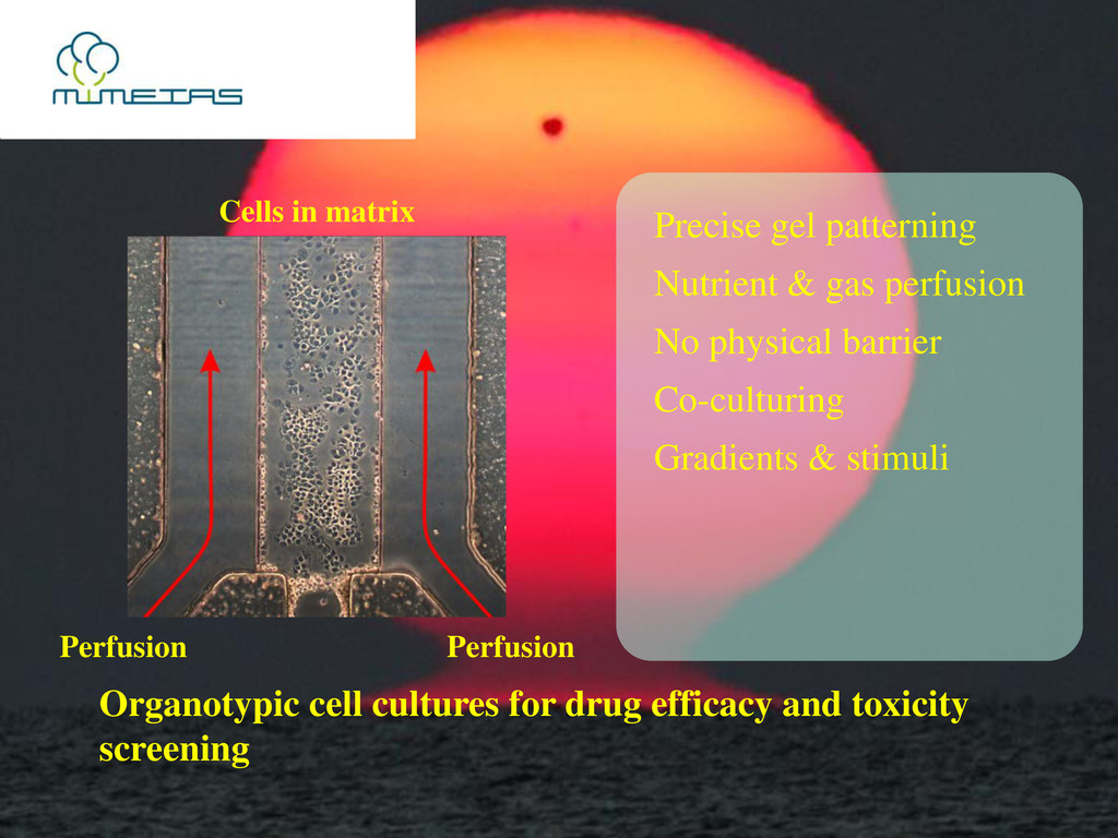 Precise gel patterning Nutrient & gas perfusion...