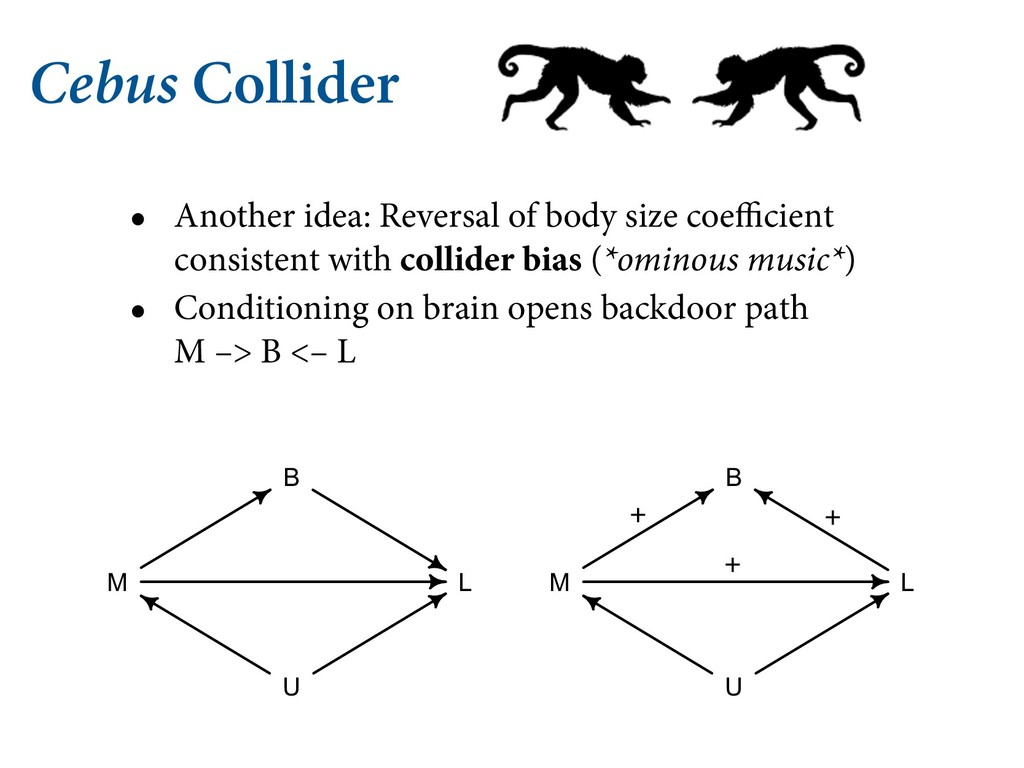 Cebus Collider • Another idea: Reversal of body...