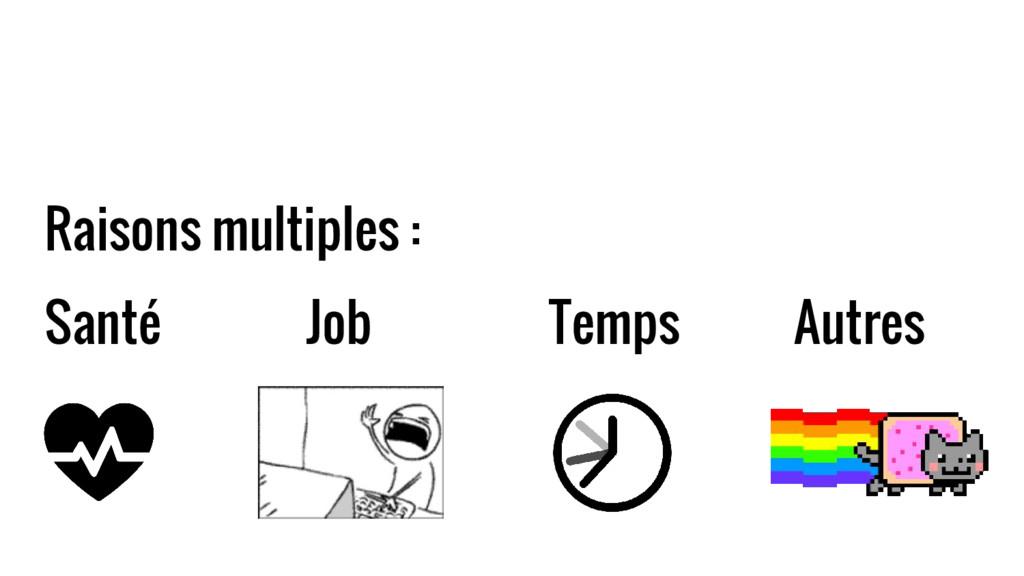 Raisons multiples : Santé Job Temps Autres
