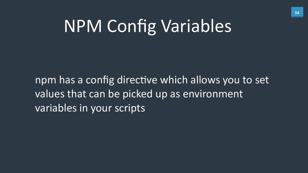 54 NPM Config Variables npm has a ...
