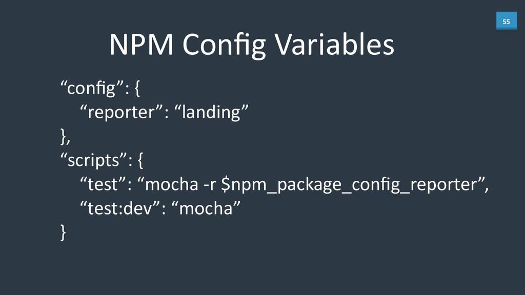 """55 NPM Config Variables """"config"""": {  ..."""