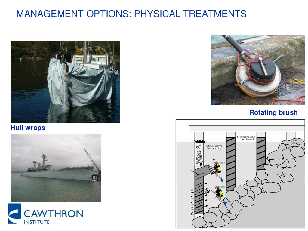 MANAGEMENT OPTIONS: PHYSICAL TREATMENTS Hull wr...