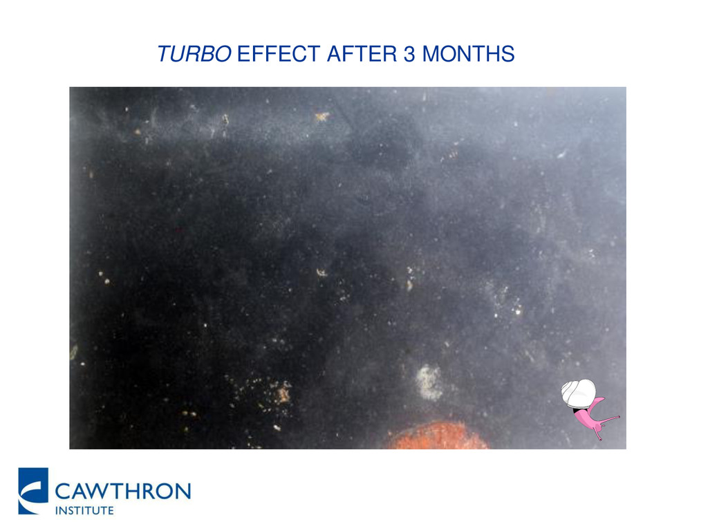 TURBO EFFECT AFTER 3 MONTHS