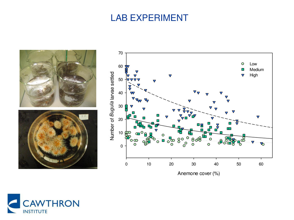 LAB EXPERIMENT Anemone cover (%) 0 10 20 30 40 ...