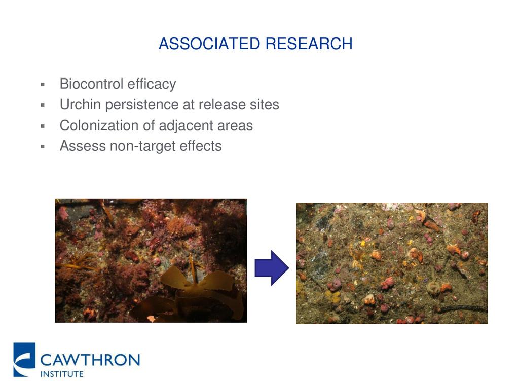 ASSOCIATED RESEARCH  Biocontrol efficacy  Urc...