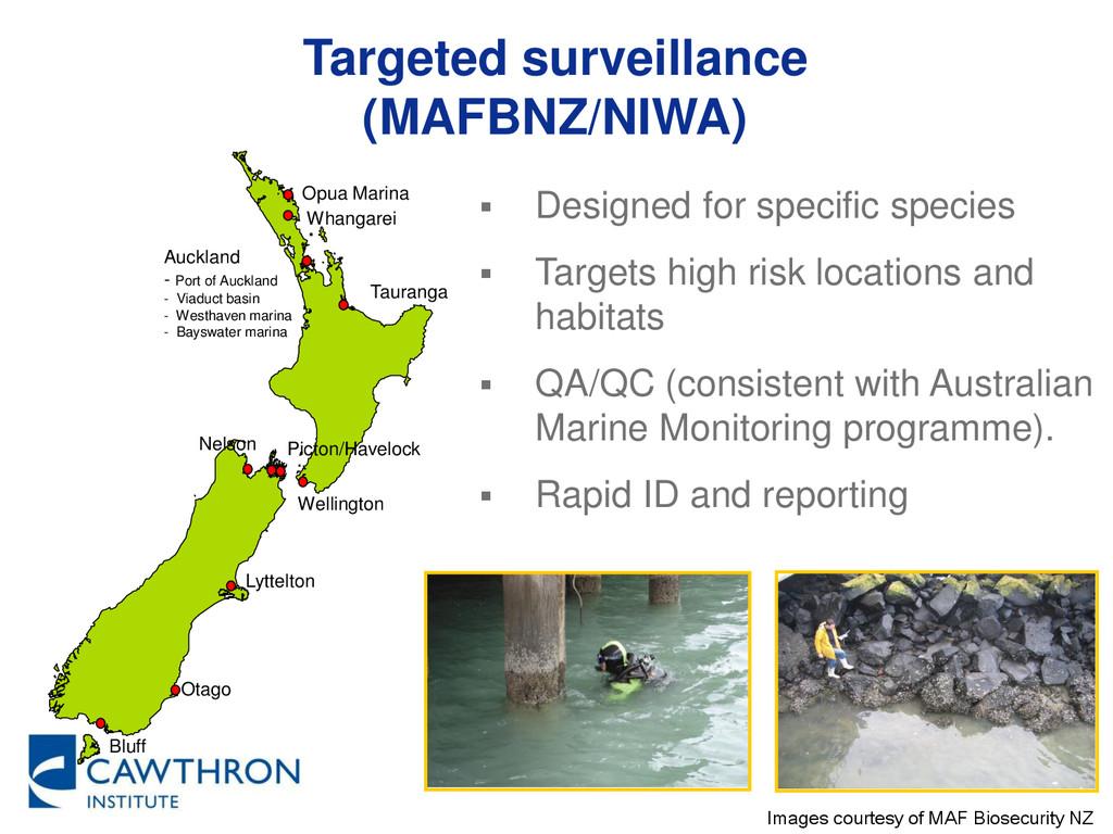 Targeted surveillance (MAFBNZ/NIWA)  Designed ...