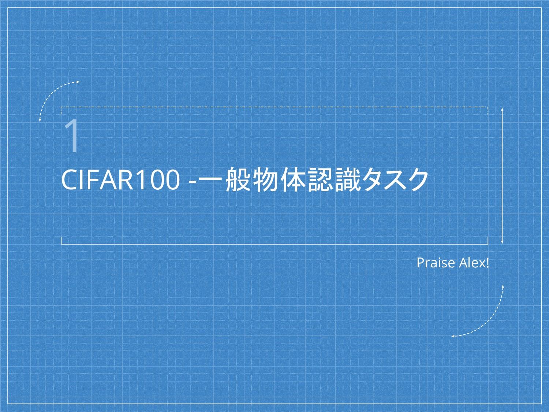 1 CIFAR100 -一般物体認識タスク Praise Alex!