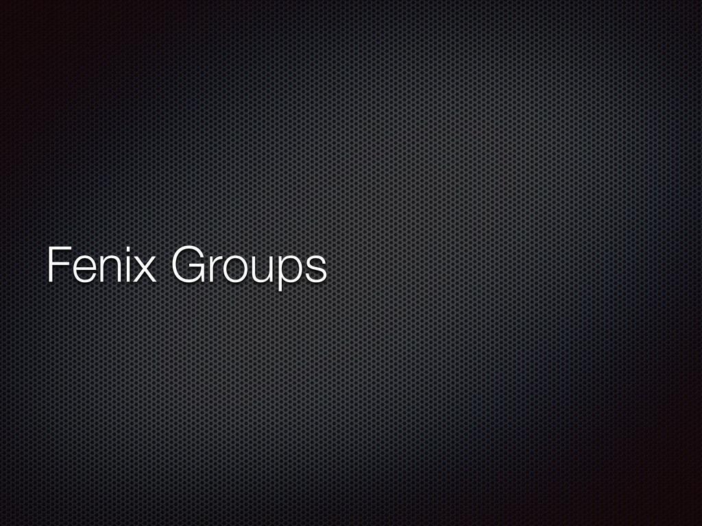 Fenix Groups