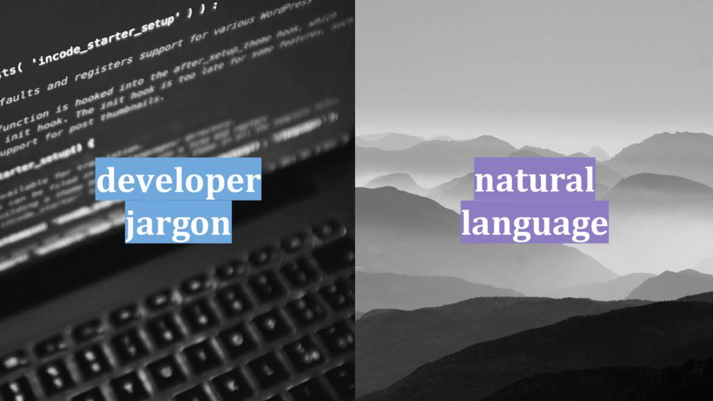 developer jargon natural language